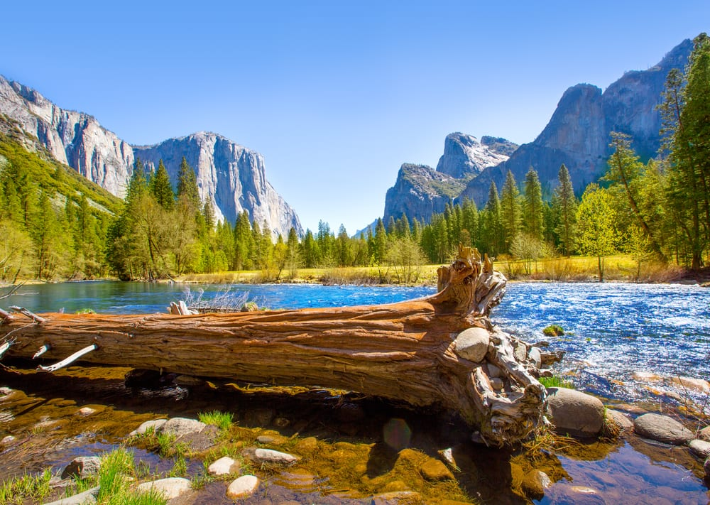 Best National Park Yosemite National Park