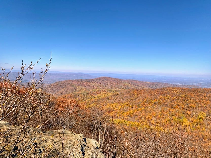 Best National park Shenandoah