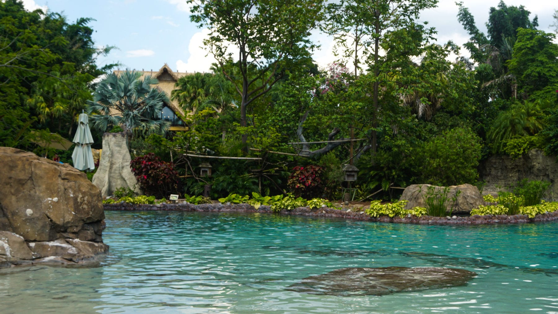 Amusement Parks in the USA - Discovery Cove