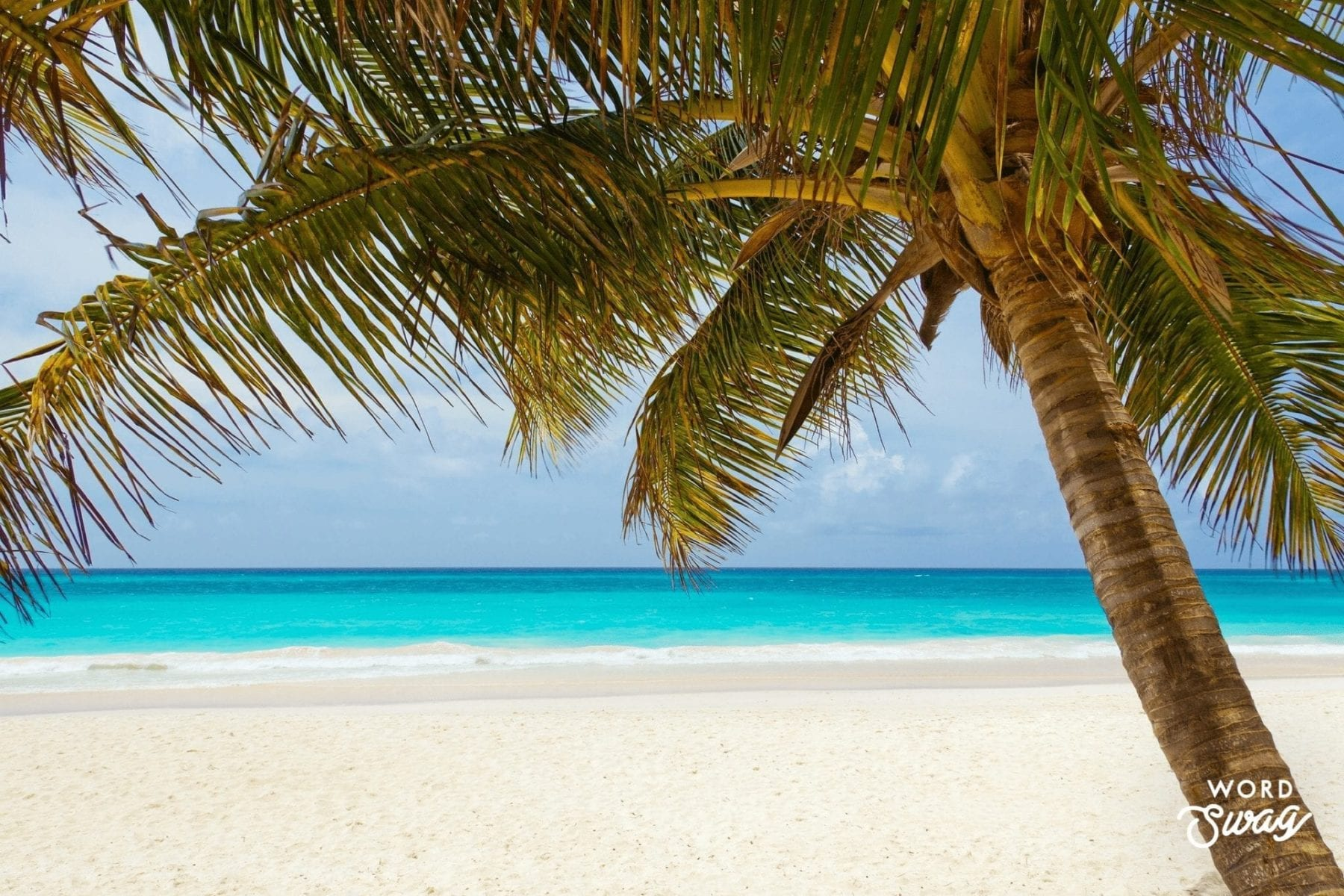 Plan a Beach Vacation at the Best Beaches in the World