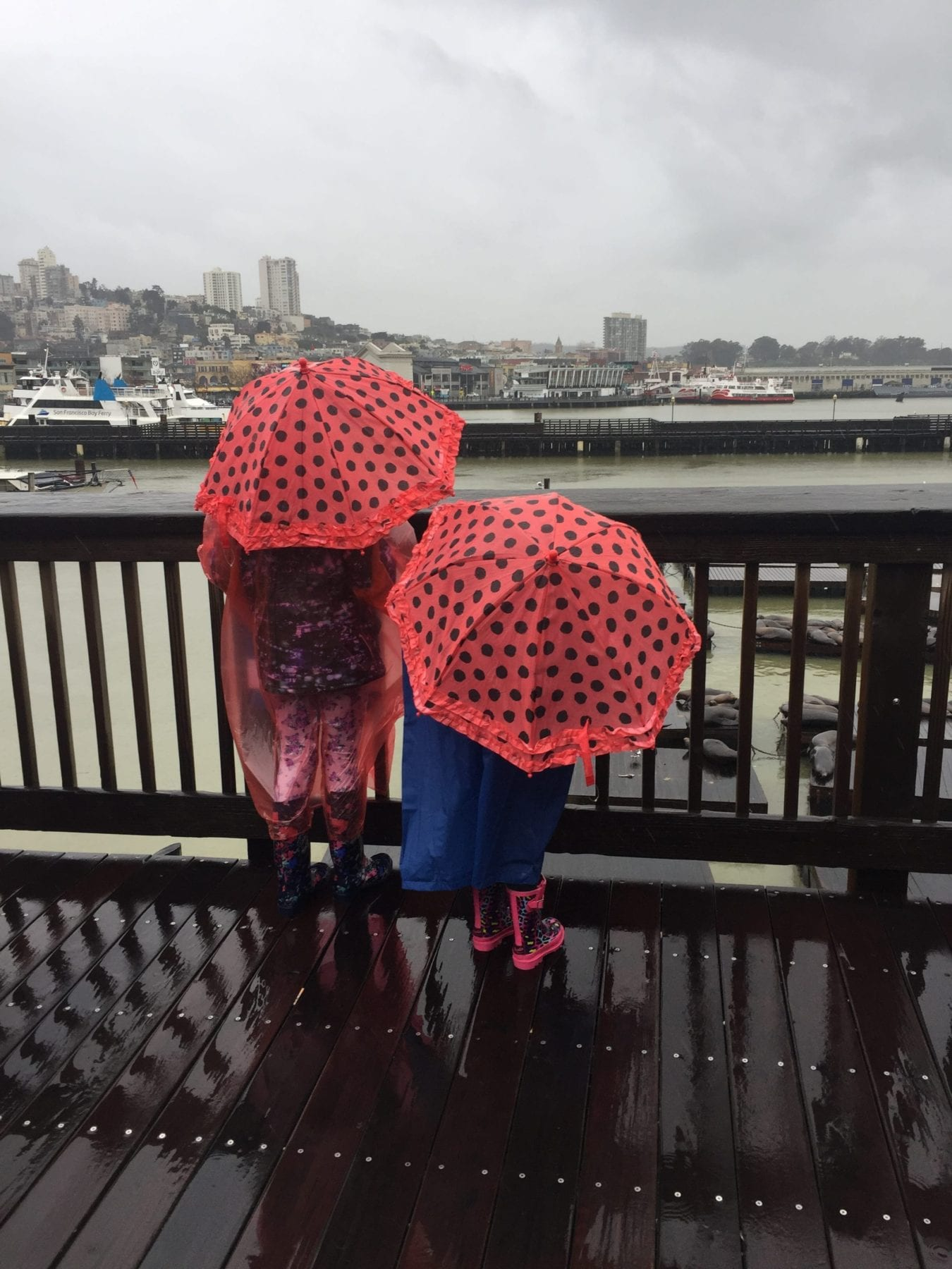 Fun things to do in San Francisco with kids