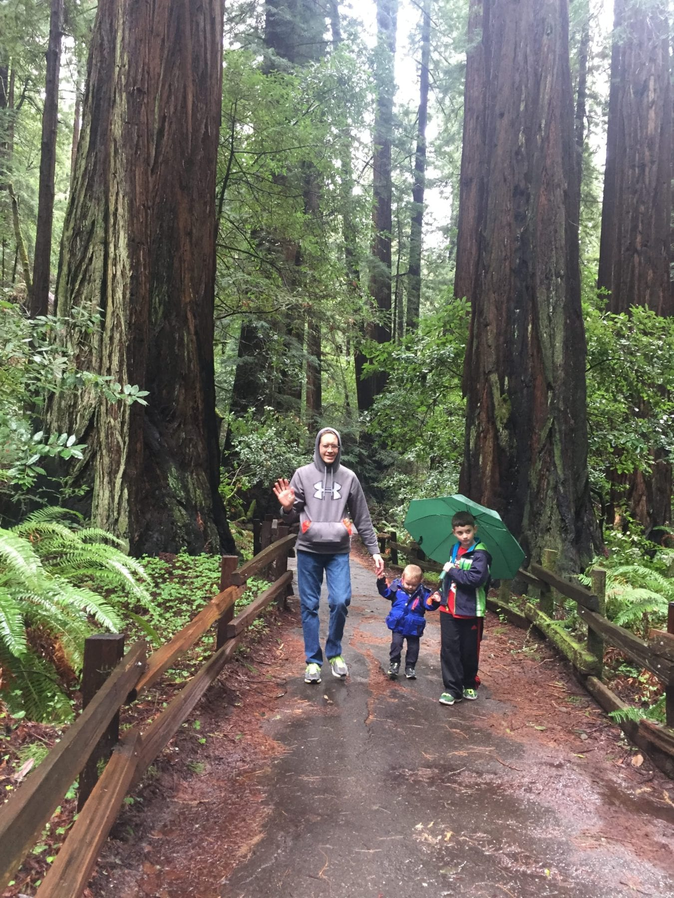 Muir Woods San Francisco with Kids