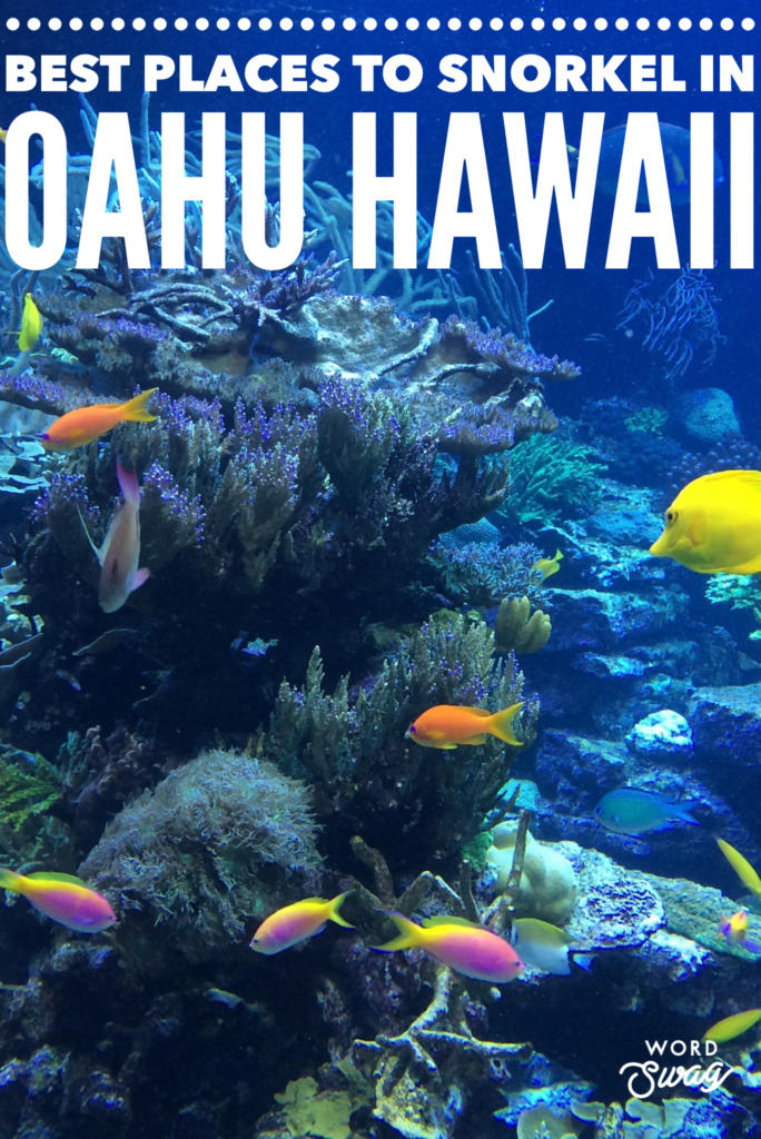 Best places to snorkel in Oahu Hawaii
