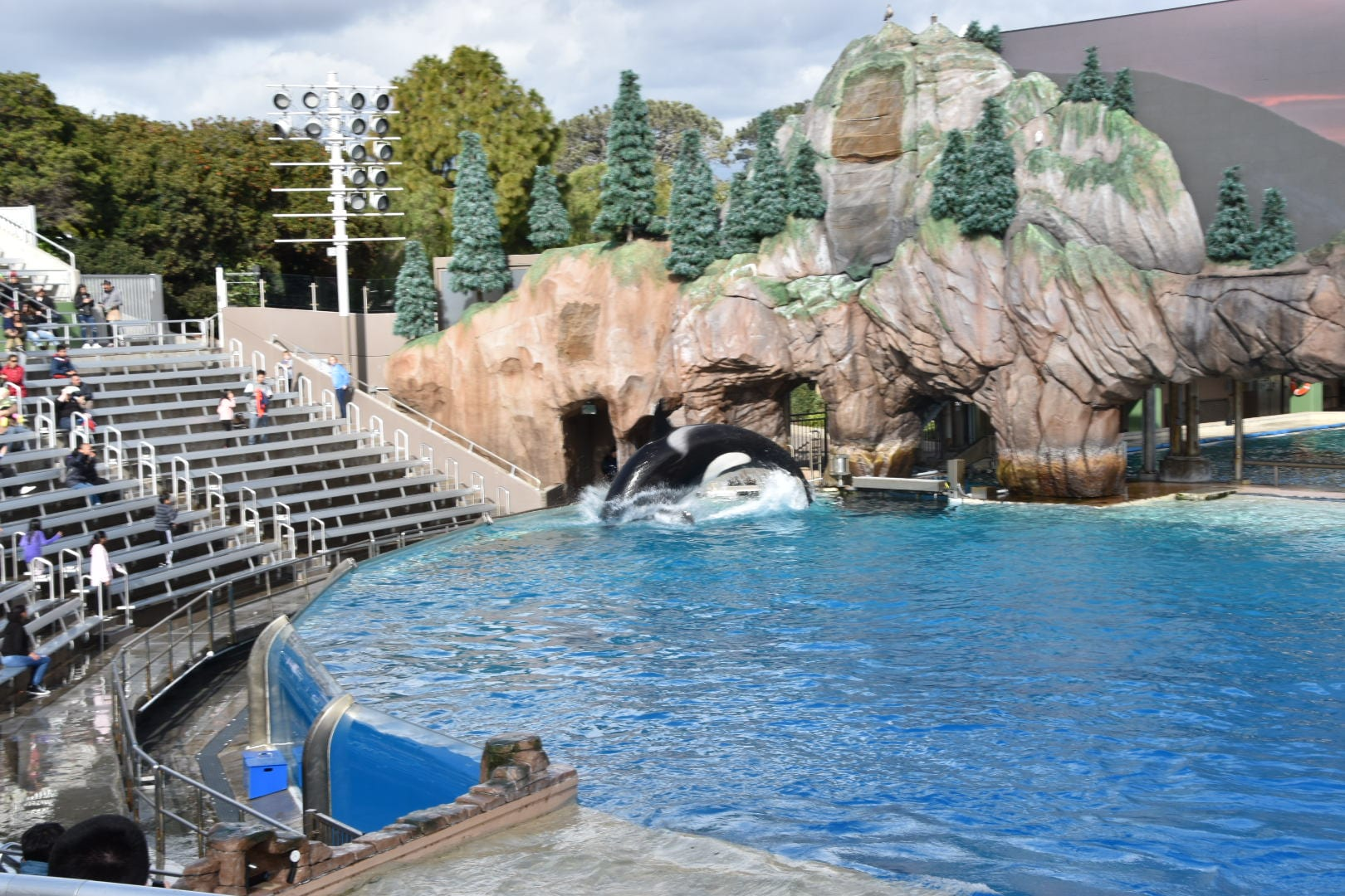 Sea World San Diego Shows