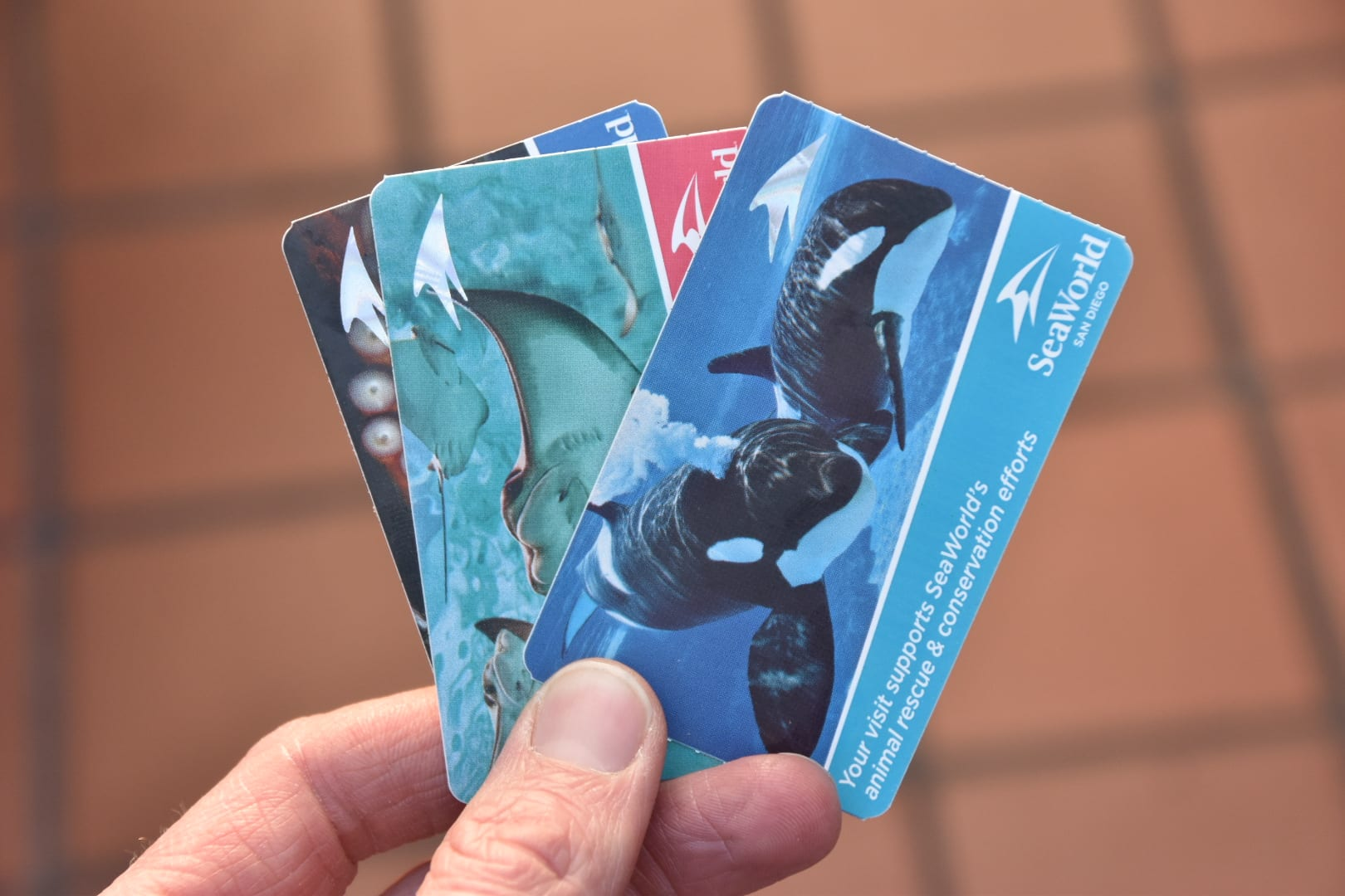 Sea World San Diego Tickets