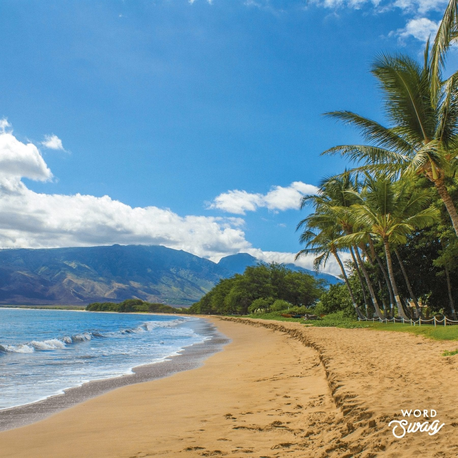 One Day in Maui