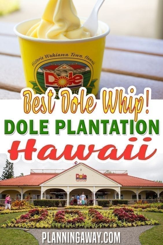 Where To Get A Dole Whip in Hawaii?!!