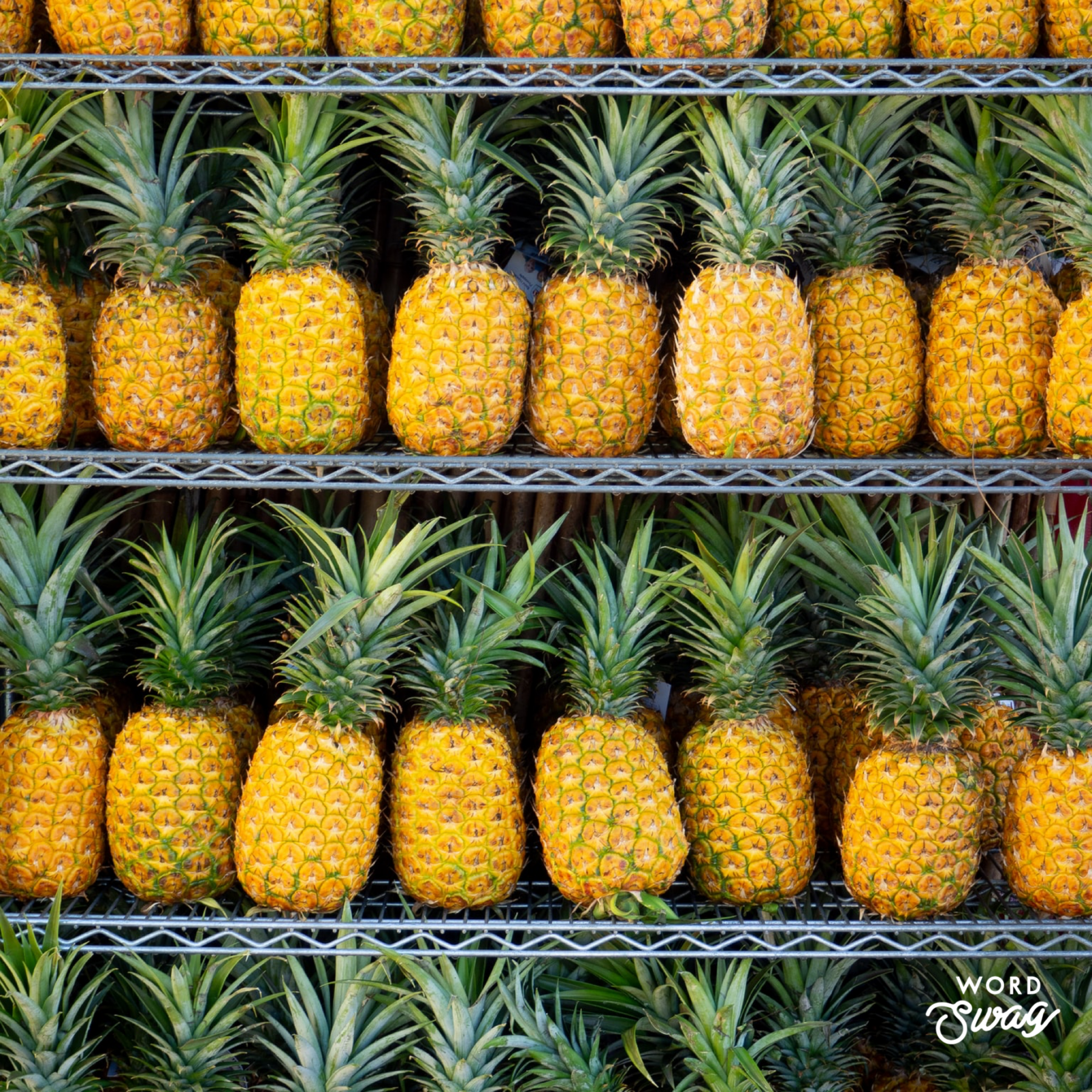 Dole Pineapple Plantation - Dole Whip in Hawaii