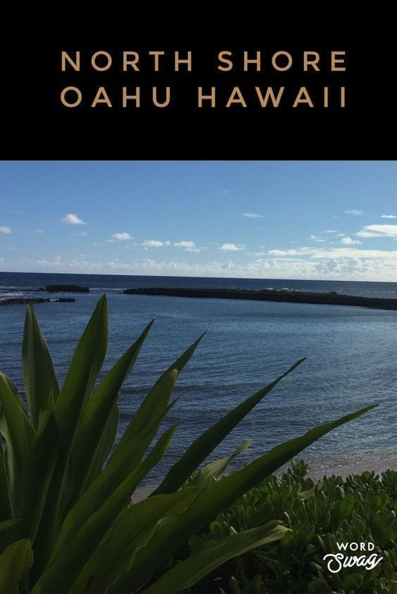 Things To Do On North Shore Oahu Hawaii