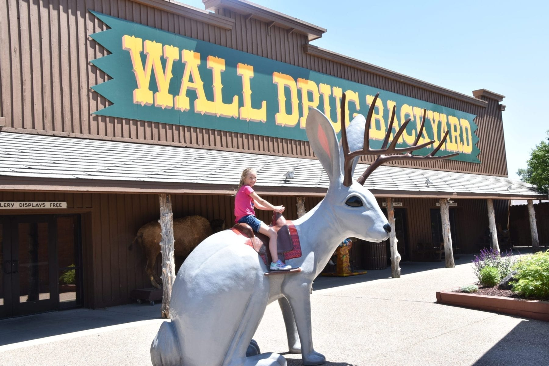 things to do at Wall drug store