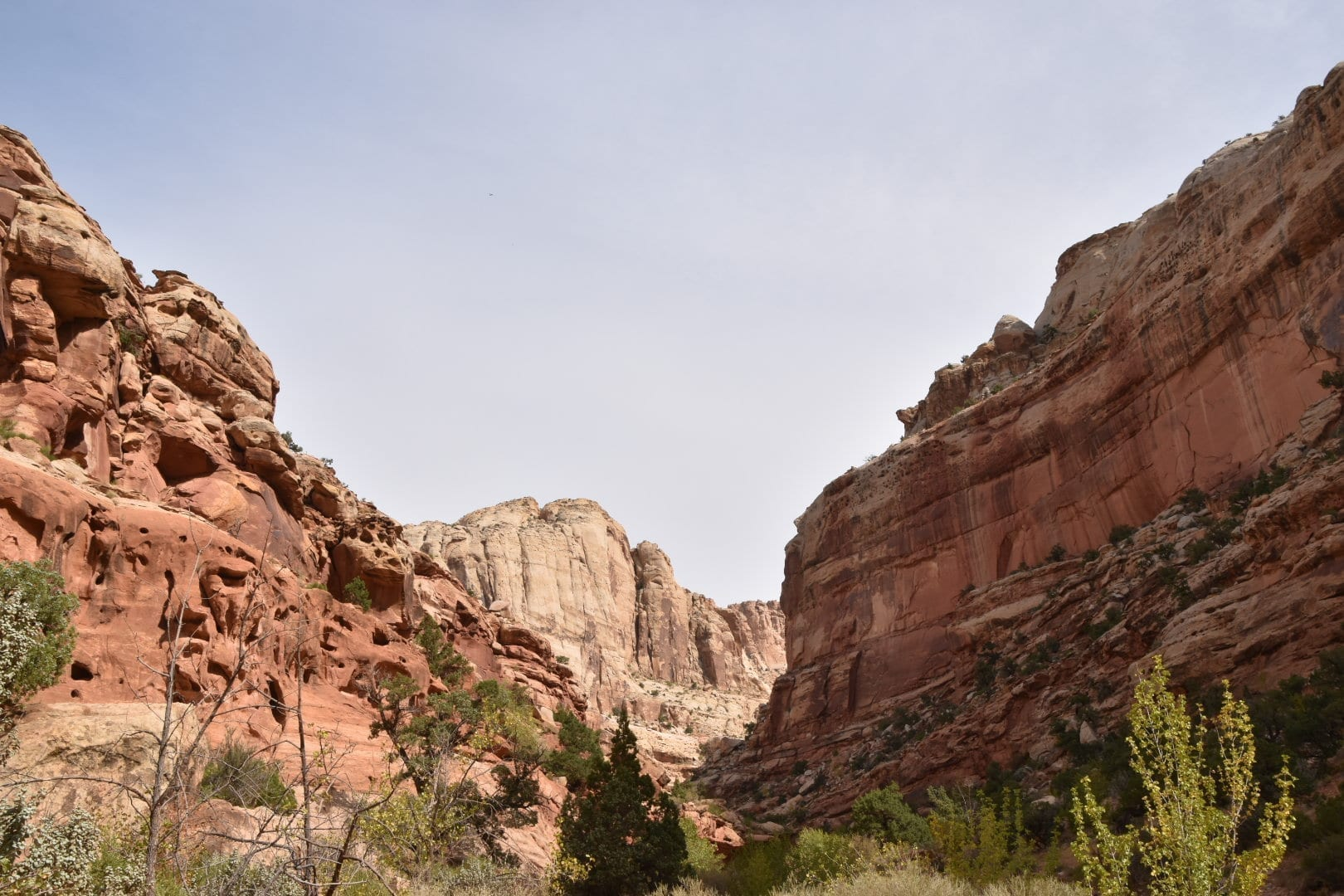 Grand Wash Best hike in Capitol Reef National Park