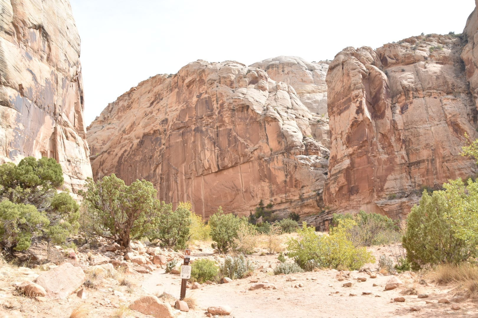 Capitol Gorge hike at Capitol Reef National Park