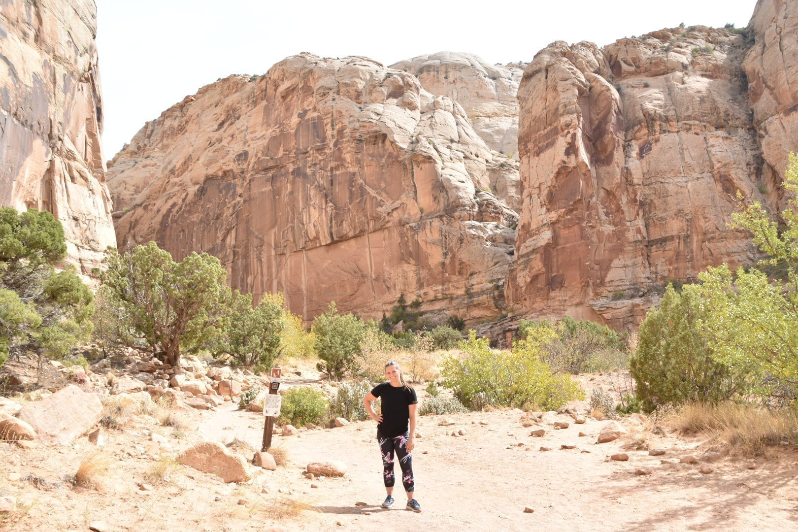 Best Hikes at Capitol Reef National Park