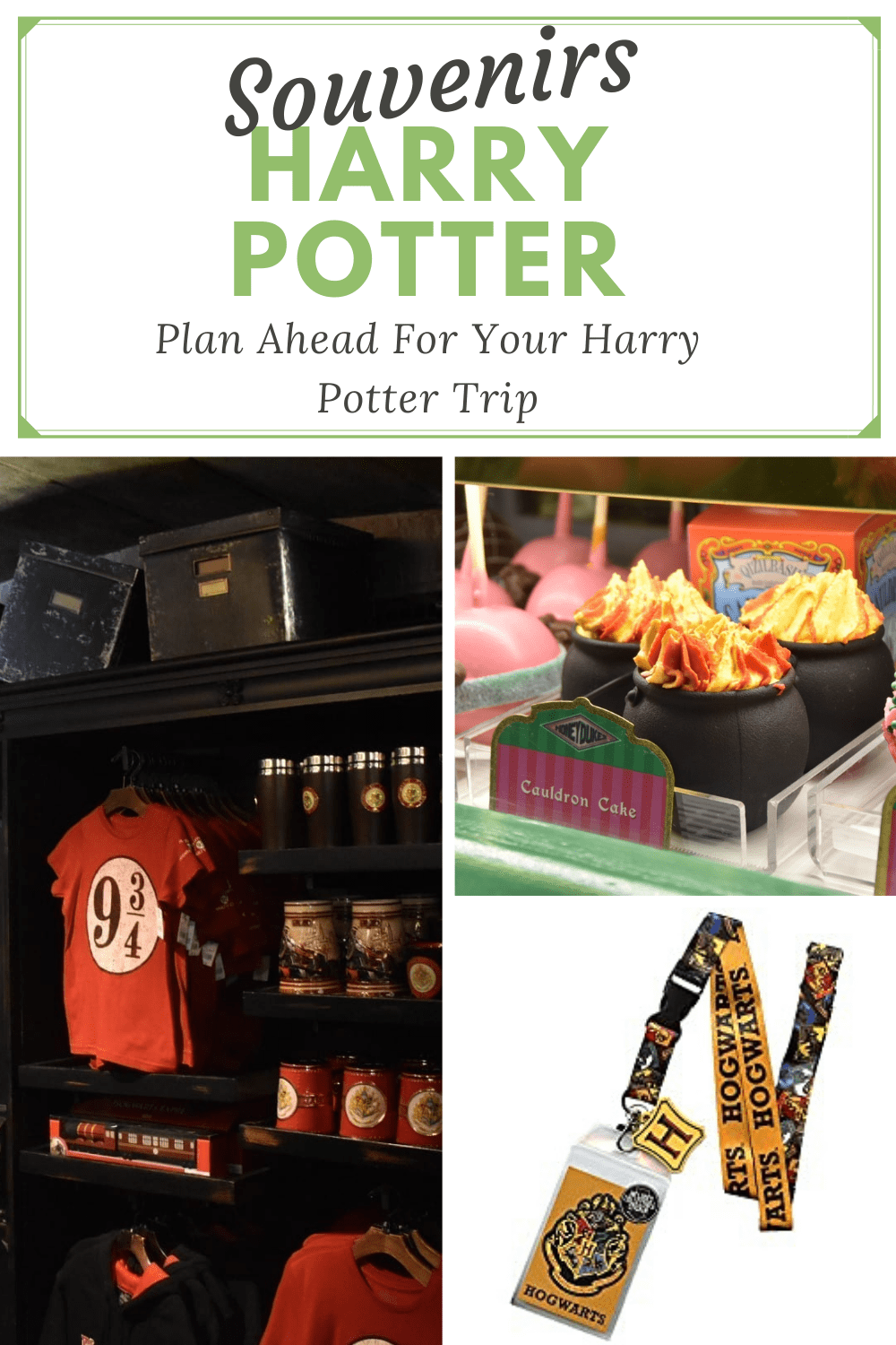 Harry Potter Souvenirs Pin for Pinterest