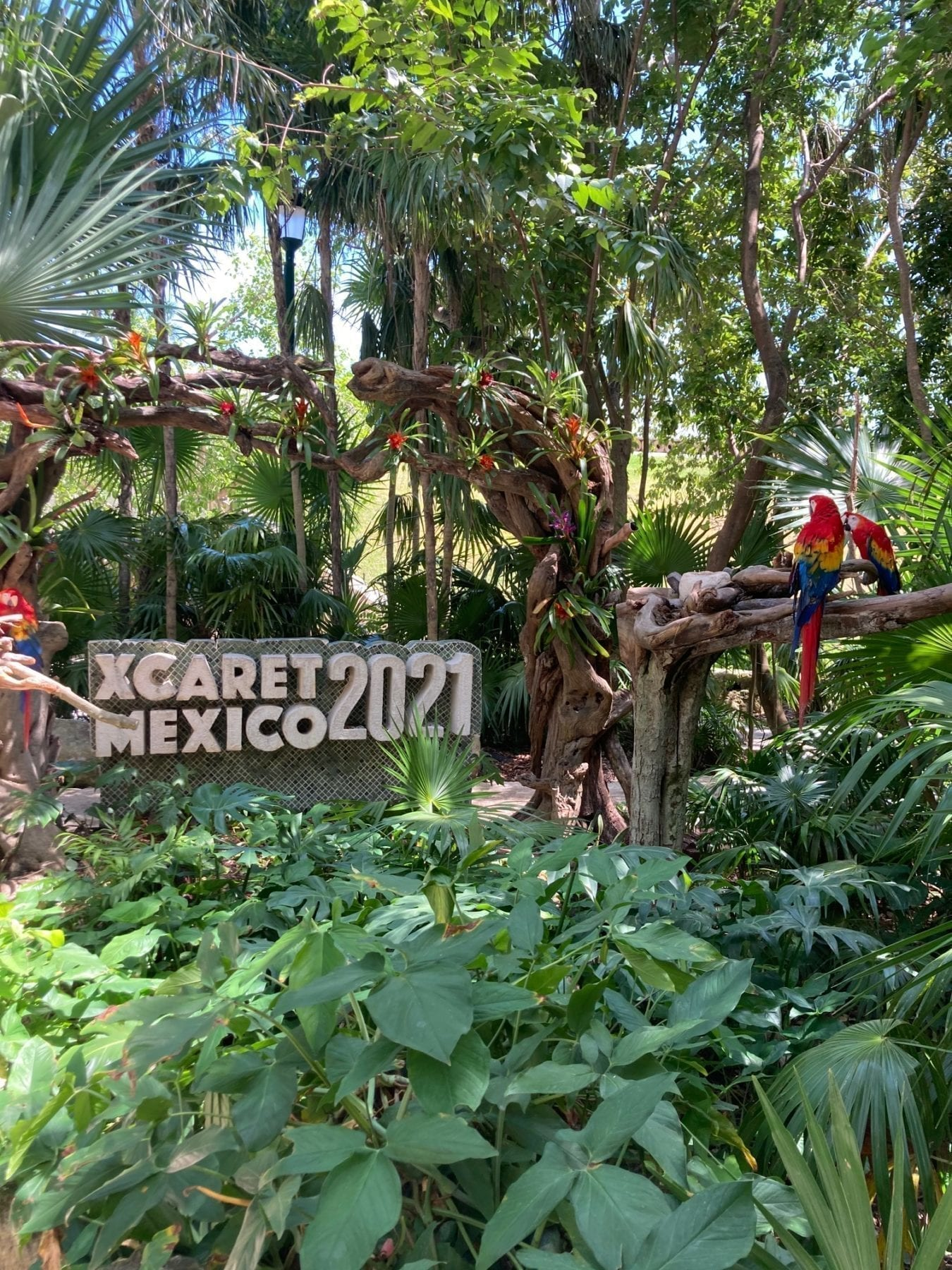 Xcaret Activities in Cancun Mexico