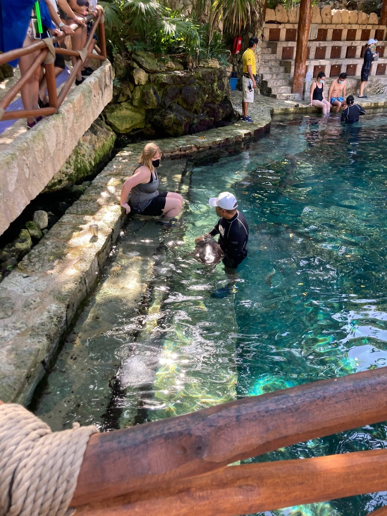 Dolphins at Xcaret