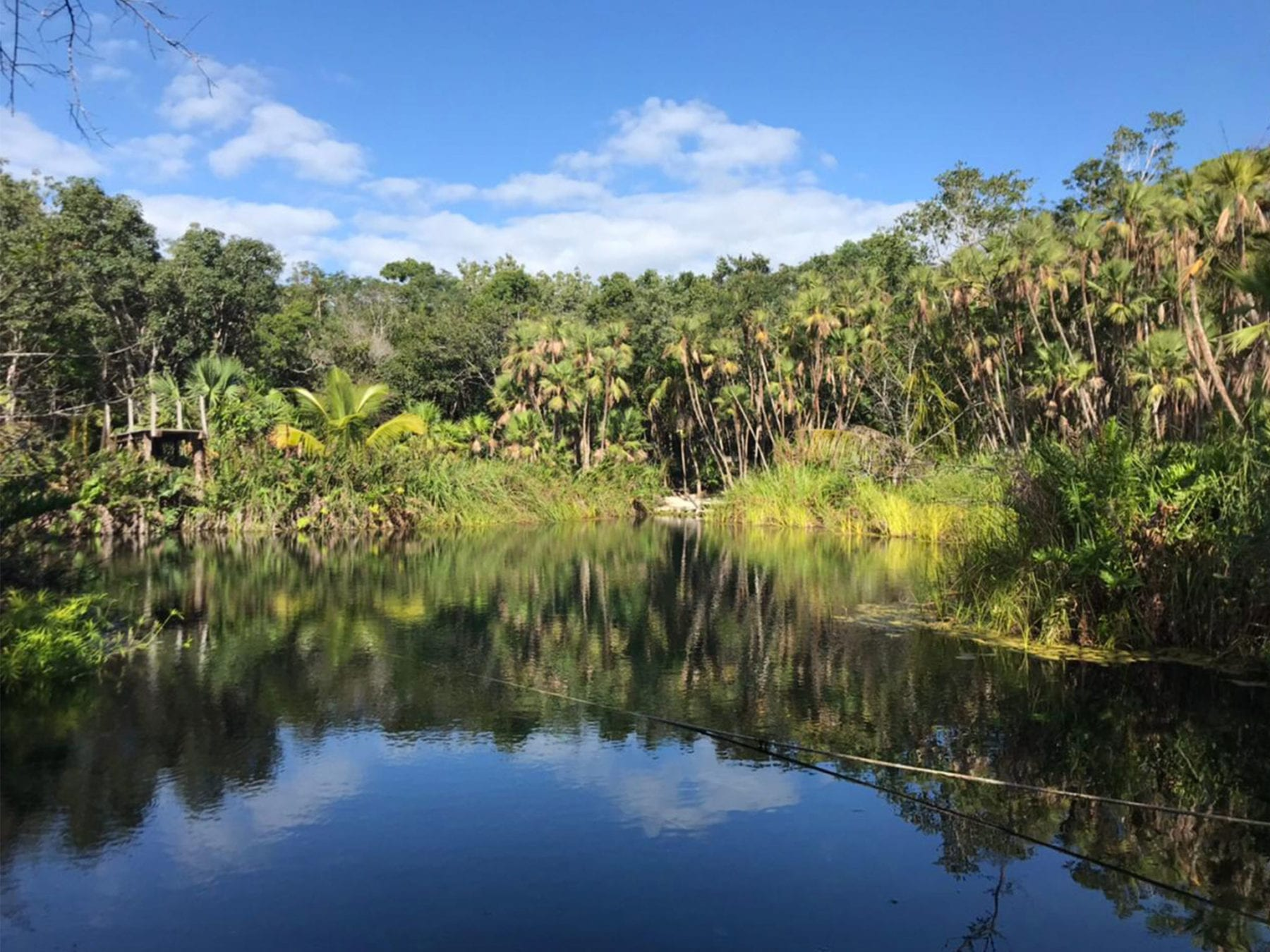 Day Trip From Cancun to Cenote Crystal