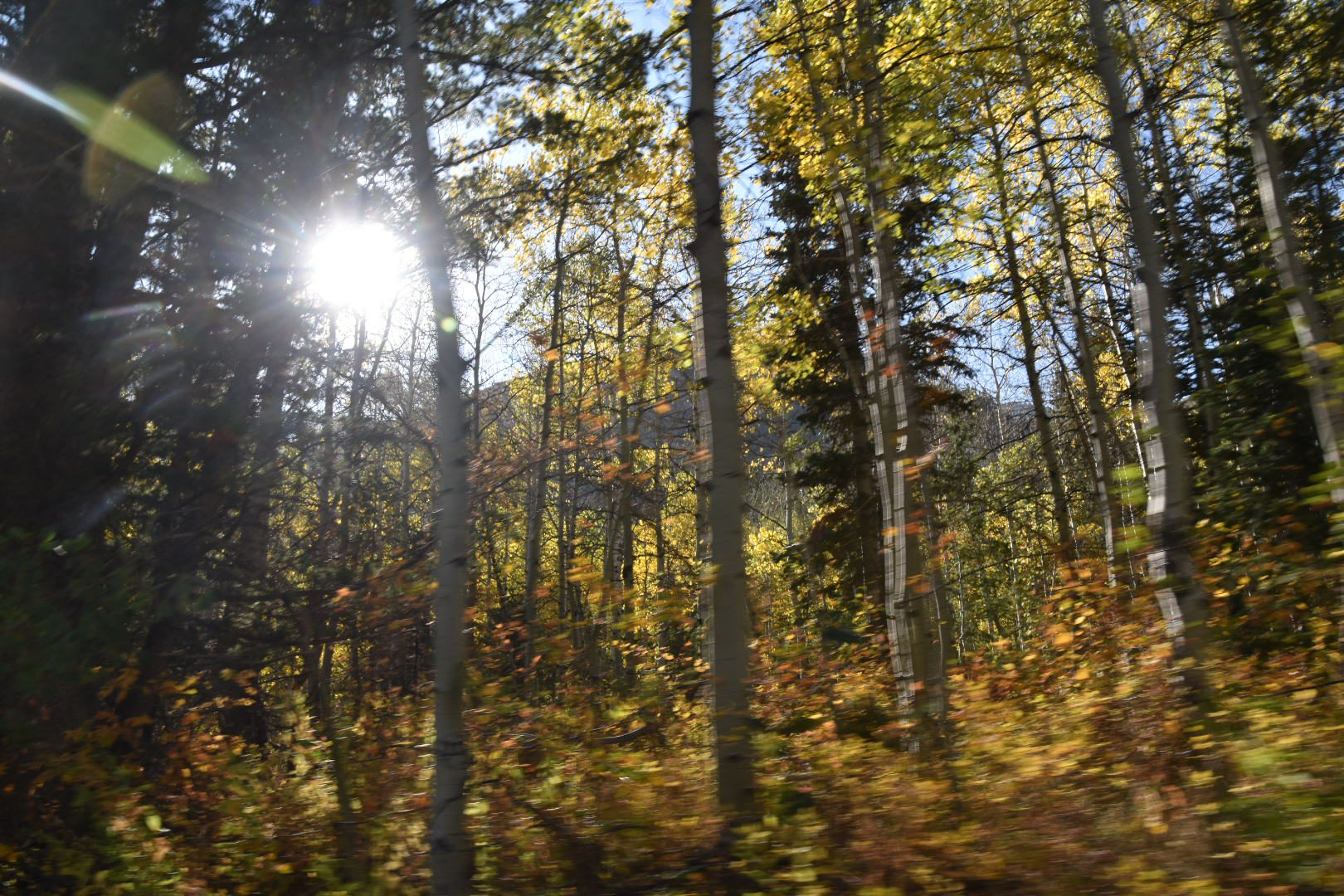 Best Fall Vacations in the USA